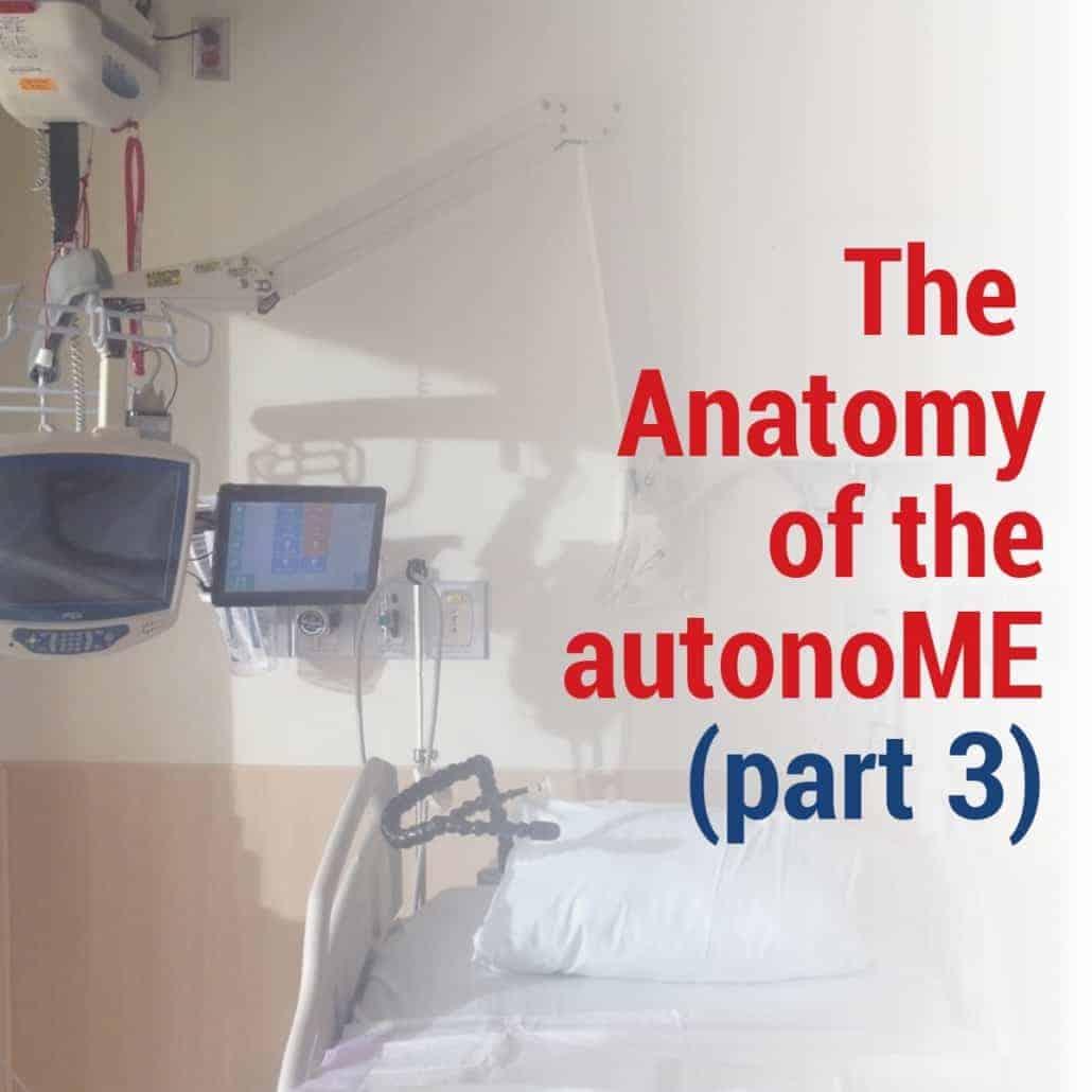 The Anatomy of the autonoME 3