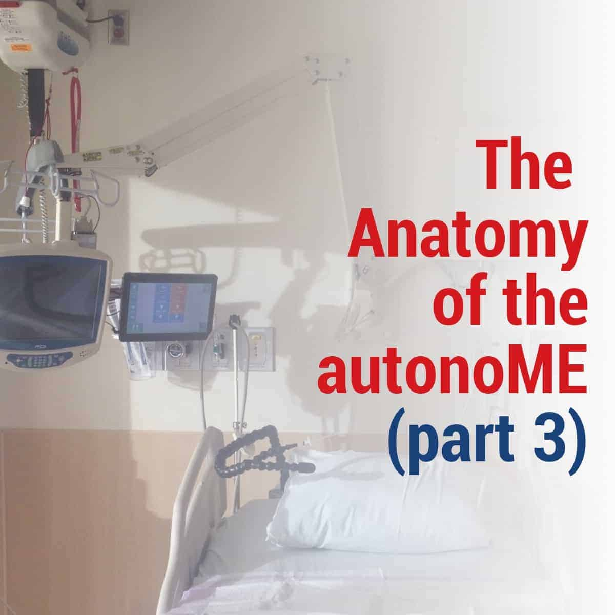 The Anatomy of the autonoME (Part 3)